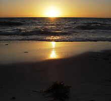 Golden glow over the horizon by Kathryn Page