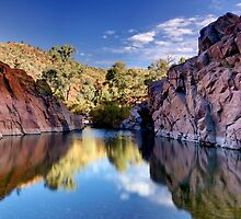 Nooldoonooldoona Waterhole by Mike Arnott