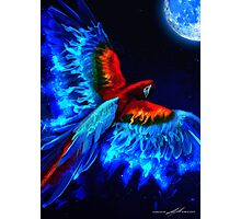 Moon Phoenix  Photographic Print