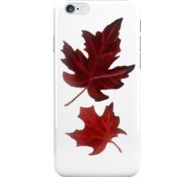 Clara's Leaf iPhone Case/Skin