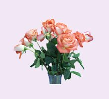 Peach Colored Roses by Schoolhouse62