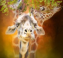 Giraffes - Above It All by Carol  Cavalaris
