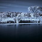 Prairie Infrared by Adam Bykowski