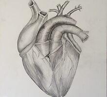 Anatomy Study III by Vikterhugo