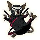 ninja chihuahua by ashmaster1121
