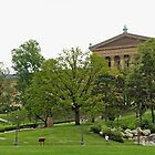 Philadelphia Art Museum - Philadelphia, Pennsylvania, USA by MotherNature2