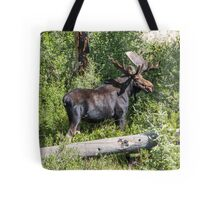 RMNP Bull Moose Tote Bag