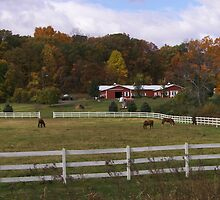 New England Horse Farm by Schoolhouse62