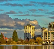 Lost Lagoon View by mspixvancouver