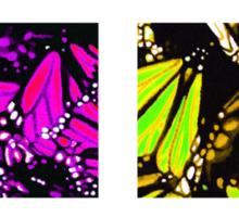 Fragmented Monarchy in Sharpie (Rainbow Edition) Sticker