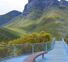 Bluff Knoll by threewisefrogs