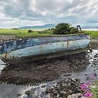 Boat Wreck at Strandhills , Co Sligo, Ireland by Pauline Tims