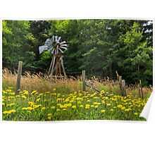 Windmill And Flowers Poster