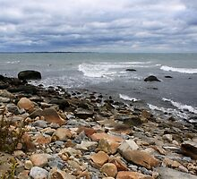 About to Rain on a Rocky Shore by SummerJade