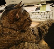 Seriously Cat, Clean your desk. by JennCaen