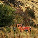 Oregon Truck  by Larry3