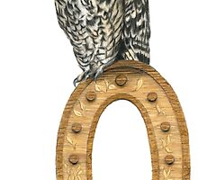 'O is for Owl' drawing by Damian Smith by DamianSmithART