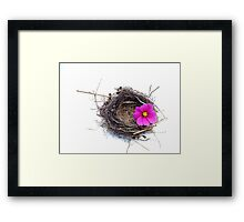 Empty nest.... Framed Print