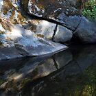 Slit Rock Reflections by Chris Gudger
