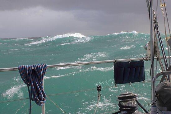 Storm on Tasman Sea by Jola Martysz