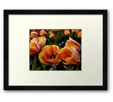 Unique Beauty - Flower Art Framed Print