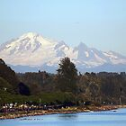 Mount Baker by Halina Plewak