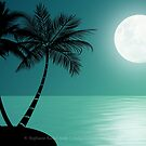 Hot Summer Night by Stephanie Rachel Seely