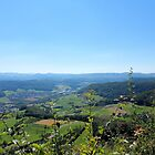 Switzerland Landscape - Mountains, Trees, Valley by Barberelli