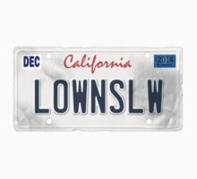 License Plate - LOWNSLW by TswizzleEG