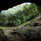 Pahntakai Cave View - Pohnpei Island, Micronesia by Alex Zuccarelli