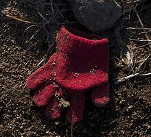 Glove 36 by Syd Winer