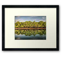 Rinca Island Reflections Framed Print
