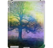 Quiet Awakening iPad Case/Skin