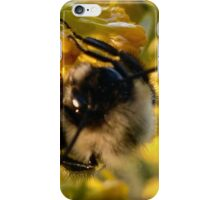Fuzzy Bee iPhone Case/Skin