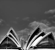 Sydney Opera House from Harbour Boat by Roger Passman
