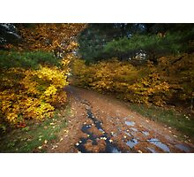 Lakeside Path in Autumn Photographic Print