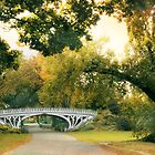 The Gothic Bridge by Jessica Jenney