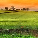 East coast of Fife, Scotland by 242Digital
