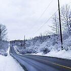 Winter Road 2 by John Velocci