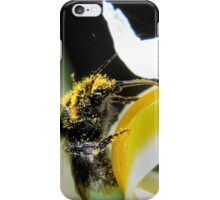 Abundance of pollen iPhone Case/Skin