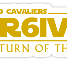 Lebron James - The Return of the King Sticker