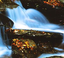CASCADE, AUTUMN by Chuck Wickham