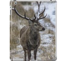 Twelve Point Stag in the Snow iPad Case/Skin