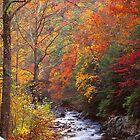 LITTLE RIVER,AUTUMN by Chuck Wickham