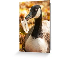 Autumn Goose Greeting Card