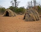 Bushman houses, Namibia by Margaret  Hyde
