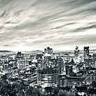 Montreal Skyline by Michael Vesia