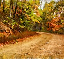 Walton Mountain Road by JohnDSmith