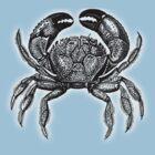 Crab by HAMID IQBAL KHAN