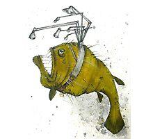 Angler Fish Photographic Print